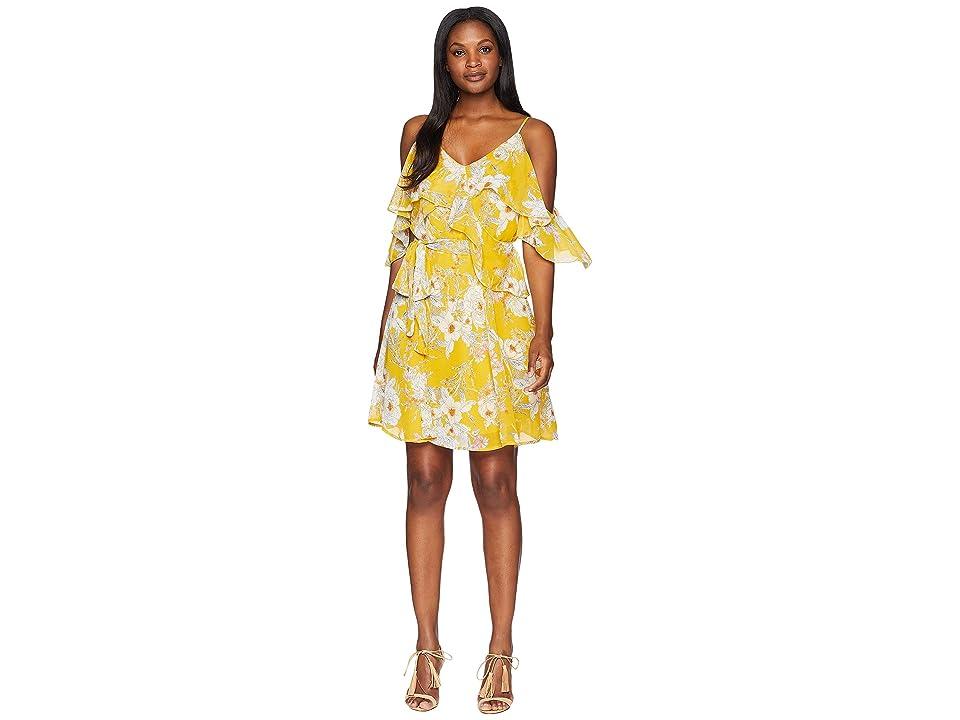 B Collection by Bobeau Stello Ruffle Tank Dress (Sunshine Floral) Women