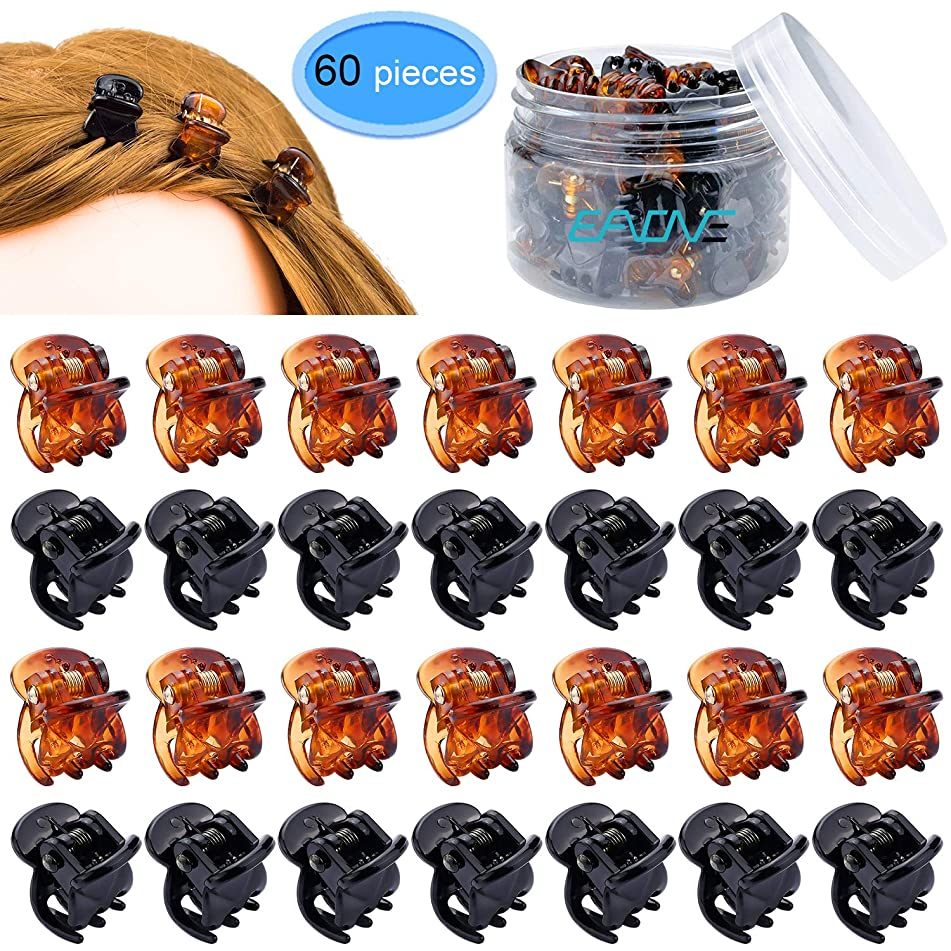 60 Pieces Mini Hair Clips for Girls Women, EAONE Hair Claw Clip Black and Brown with Box Container Packaged