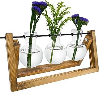 DOTLINE DECO Bulb Vase - Glass Plant Terrarium with Wooden Stand - Succulent Planter Containers...