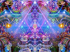 Psychedelic Tapestry   Trippy Wall Hanging   Visionary   Trippy Art   DMT   The Gates of Atlantis