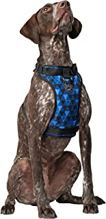 Canada Pooch | Everything Dog Harness | No-Pull Adjustable Dog Harness