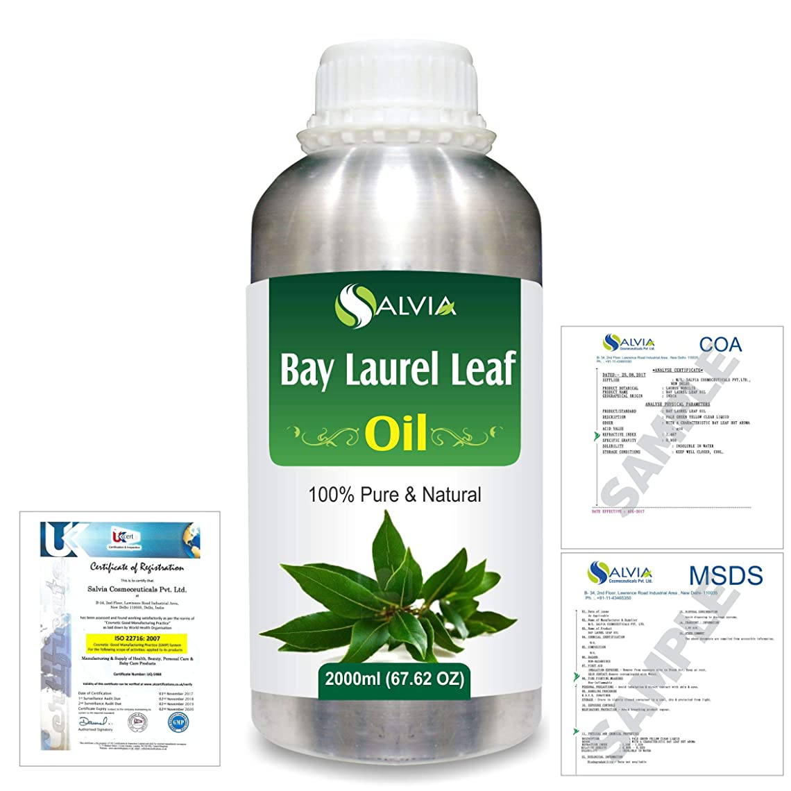 本気ゾーン統合Bay Laurel Leaf (Laurus nobilis) 100% Natural Pure Essential Oil 2000ml/67 fl.oz.