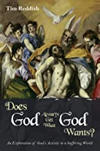 Does God Always Get What God Wants?: An Exploration of God's Activity in a Suffering World