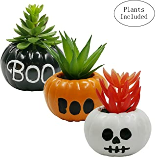 JIUCHEN Artificial Succulent Plants, Assorted Decorative Faux Succulent Potted Fake Plants in Scary Pumpkin Pots,Halloween Décor, Set of 3(Boo and Skull Shaped)