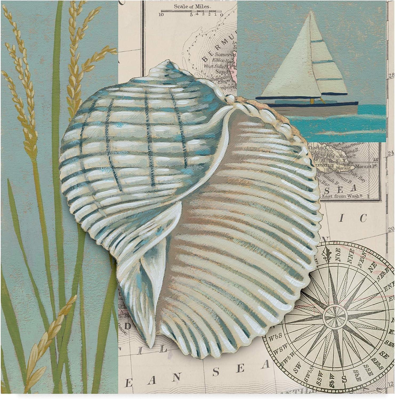 Trademark Fine Art WAG00845-C1414GG Seaside Shell I Art by Chariklia Zarris, 14x14, 14x14, Multicolor