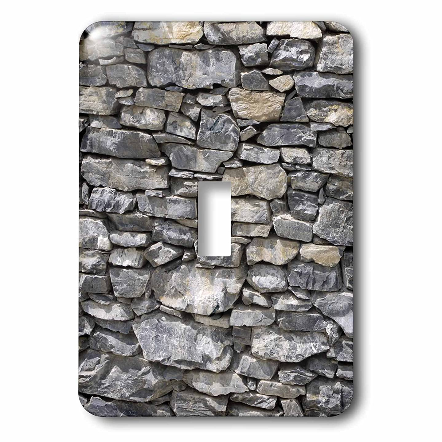 3dRose lsp_280421_1 A A Rustic Gray Stone Wall With an Antique Look Toggle Switch