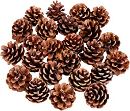 Cooraby 24 Pieces 3-4 cm Mini Christma Pine Cones Holiday Pinecones Xmas Natural Pine Cones Pendant Fall Thanksgiving Chri...