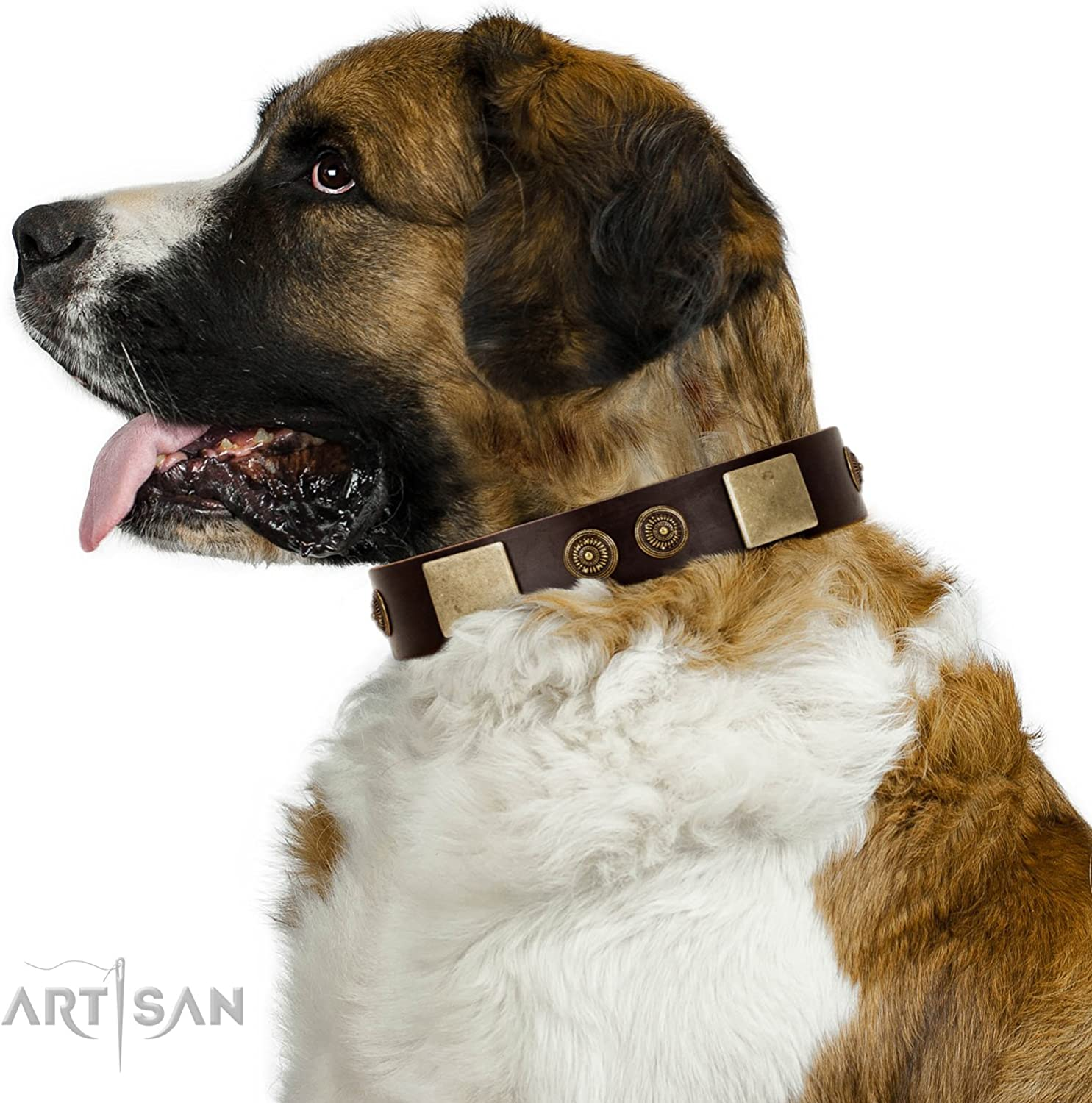 24 inch FDT Artisan Brown Leather Dog Collar with Plates and Ornate Studs  Exclusive Handcrafted Item  1 1 2 inch (40 cm) Wide  Gift Box Included