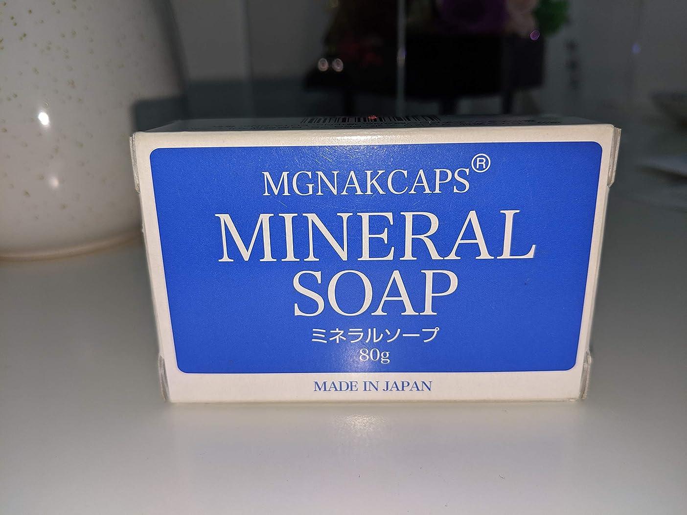 テンション服を洗う補助金マグナキャプス ミネラル ソープ