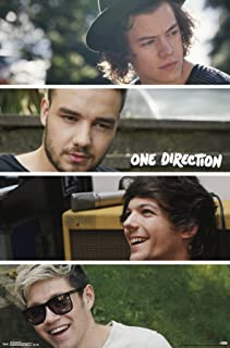 Trends International 1D Group Collage Wall Poster 22.375