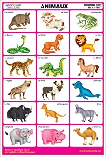 french learning posters