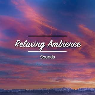 18 Sonidos de Ambiente Relajante para el Despertar Espiritual