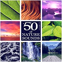 50 Echoes of Nature Sounds - The Best Relaxing New Age Music in the Universe for Contemplations & Reflections