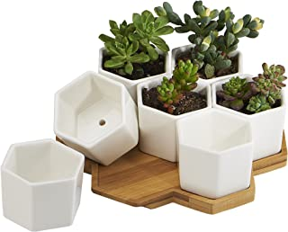 FLOWERPLUS Planter Pots Indoor, 7 Pack 2.75 Inch Modern White Ceramic Small Hex Succulent..