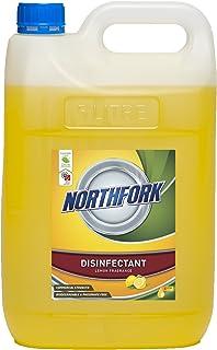 NORTHFORK 638100701 GECA Lemon SANITISER, 5L