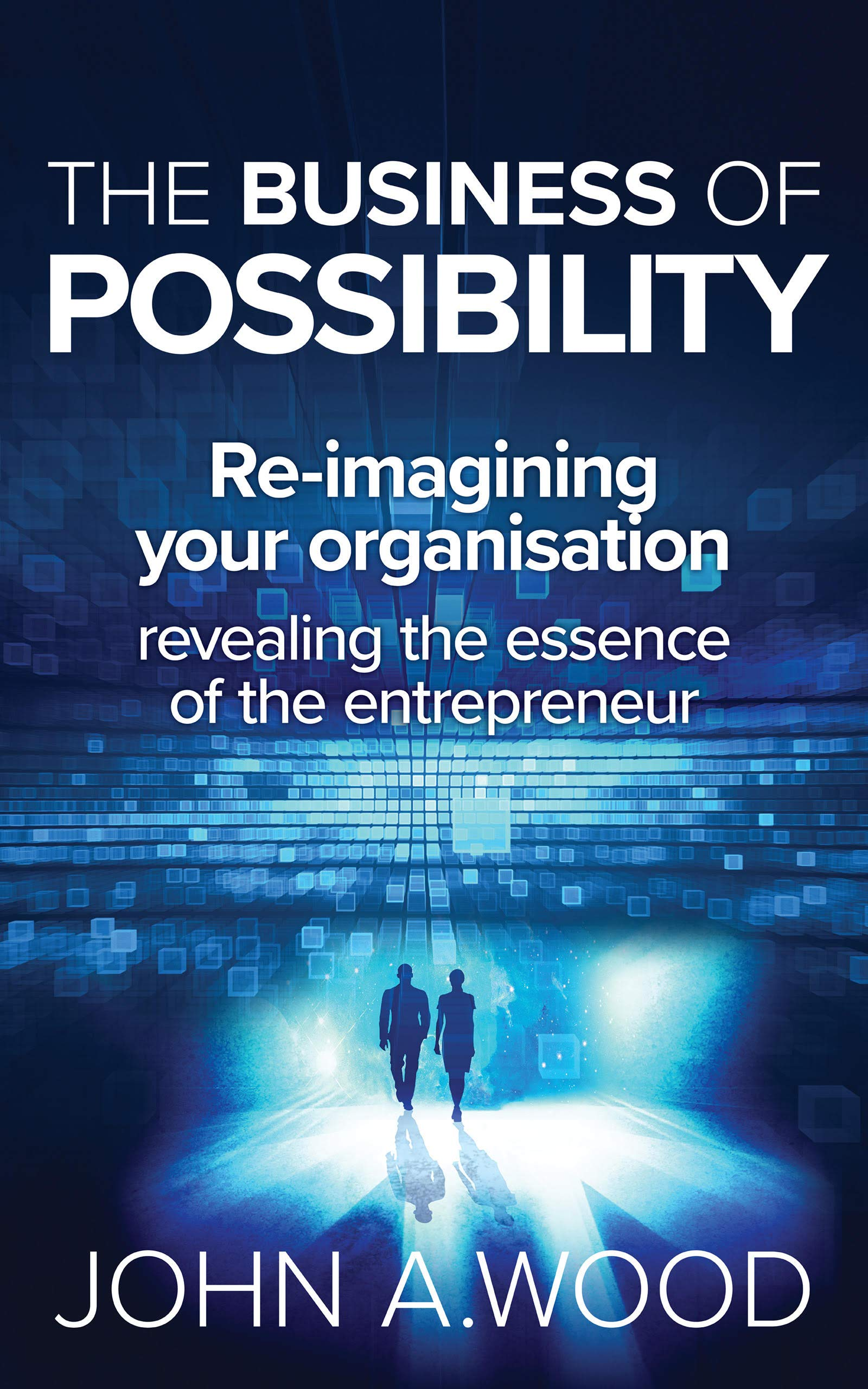 The Business of Possibility: Reimagining Your Organisation (Possibility a state of mind Book 2)