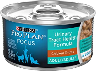 Best Canned Cat Food For Urinary Tract Health [2021 Picks]
