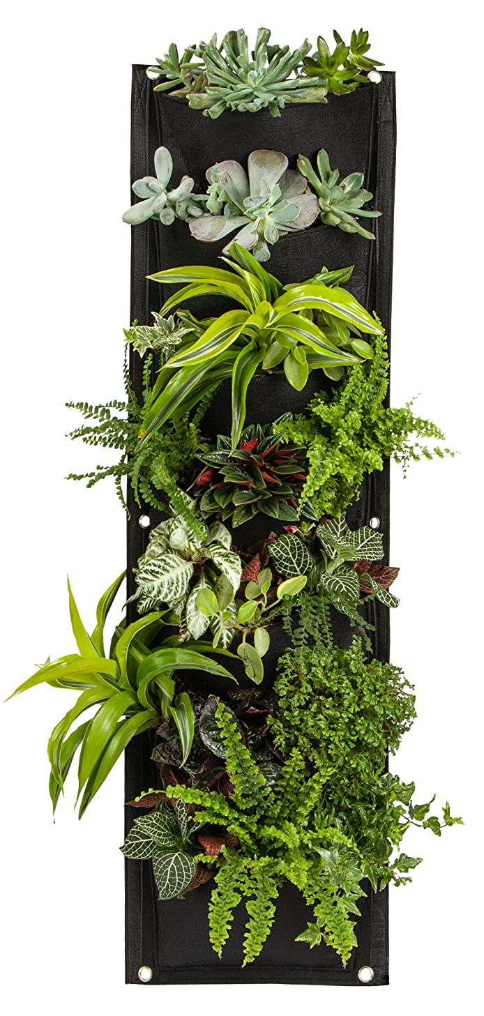 7 Pocket Hanging Vertical Garden Wall Planter, for Yard Garden Home Decoration, Eco-Friendly Plant Grow Bag for Herbs Vegetables and Flowers