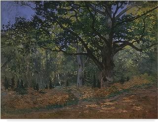 Trademark Fine Art Bodmer Oak Fontainebleau Forest by Claude Monet, 14x19-Inch, Multicolor