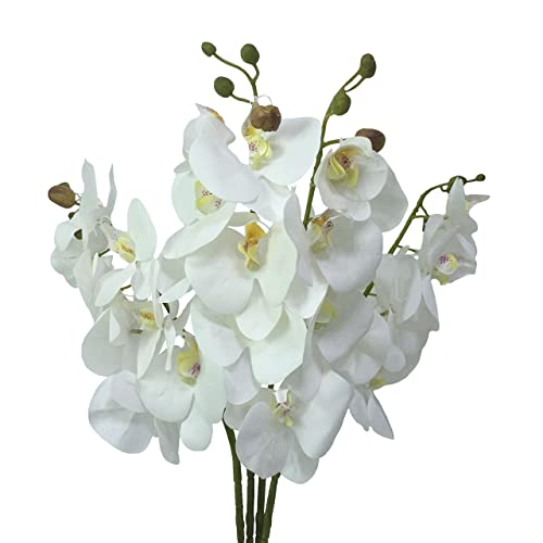 Silk Orchid Stems Amazon