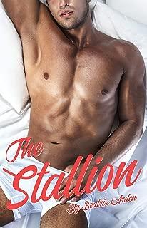 The Stallion: (An intersex man/man mpreg romance short story.)