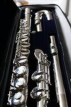 Best di zhao alto flute Reviews