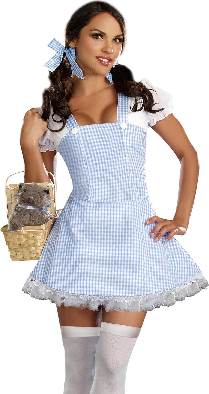 Dreamgirl Women's Blue Gingham Dress