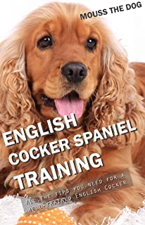 cocker spaniel training tips