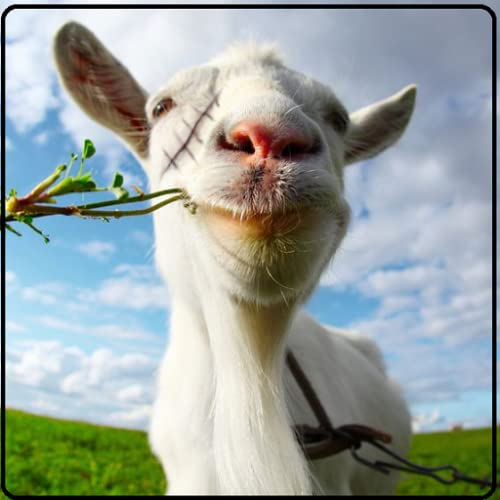 Crazy Goat Unlimitted Simulator