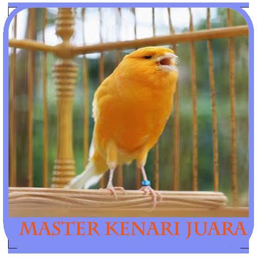 Chirping Bird Master Canaries Full