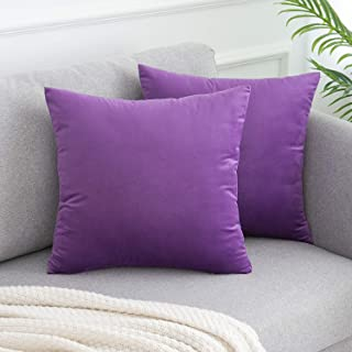 WLNUI Soft Velvet Lavender Purple Throw Pillow Covers Set of 2 Decorative Pillow Case Square Cushion Cover for Sofa Couch Home Farmhouse Decor 18x18 Inch 45x45 cm