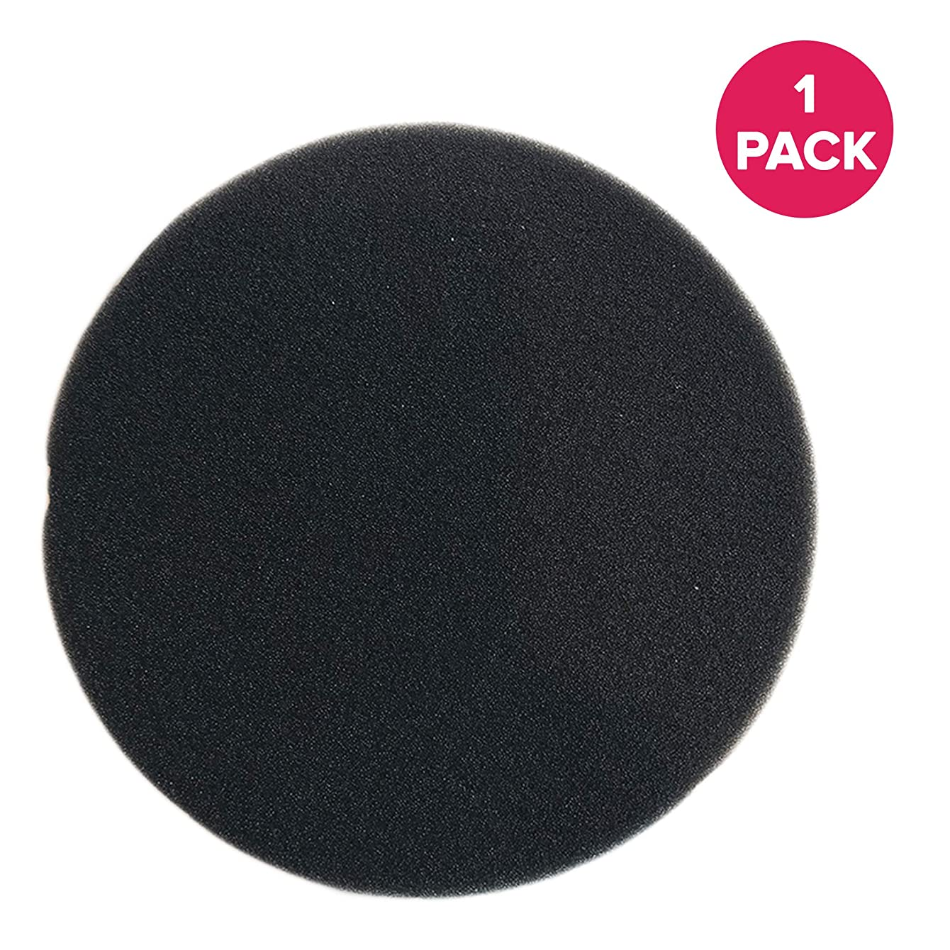 Think Crucial Replacement for Eureka DCF-26 Foam Filter Fits AirSpeed ONE, AirSpeed Zuum, & PowerGlide, Compatible With Part # 090190 & 68465
