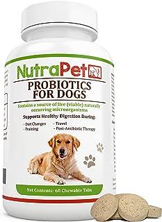 Best safe probiotics for dogs Reviews