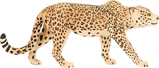Best east african wild animals Reviews