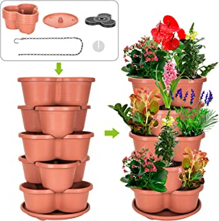 plant herbs strawberry pot