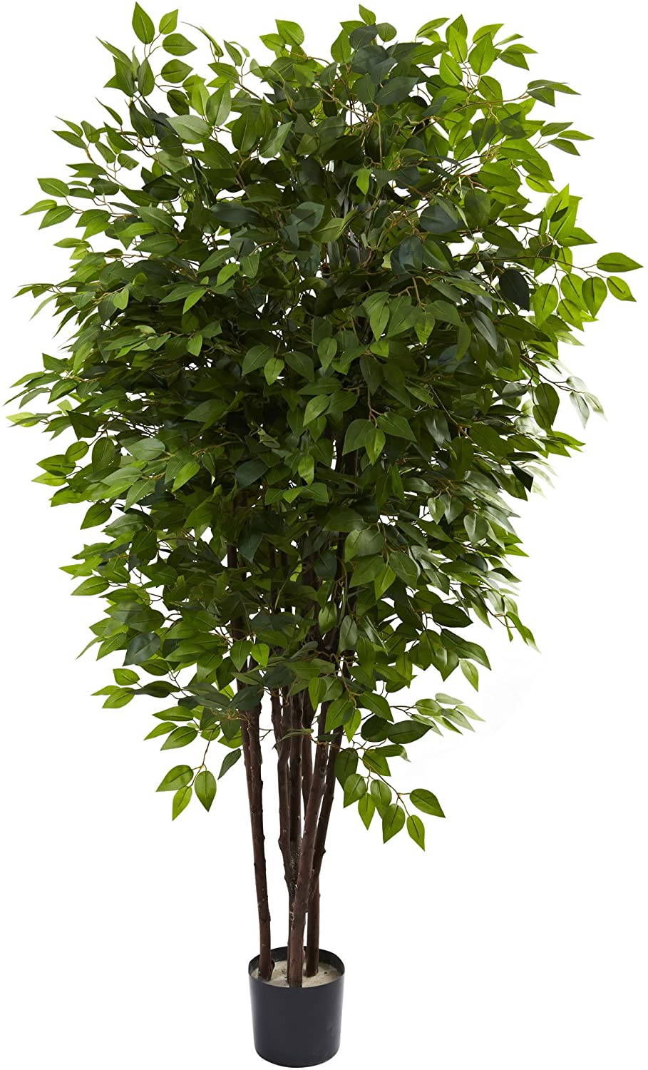 Nearly Quantity limited Natural 5402 6.5ft. Deluxe Fort Worth Mall 48x48x78 Green Tree Ficus