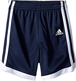 Iconic Mesh Shorts (Toddler/Little Kids)