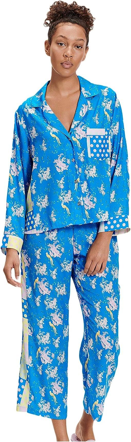 Blue Aster Floral