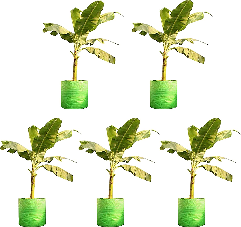 COIR GARDEN Terrace Gardening All items free shipping HDPE Grow Sizes Bigger Bags Ba for Special price