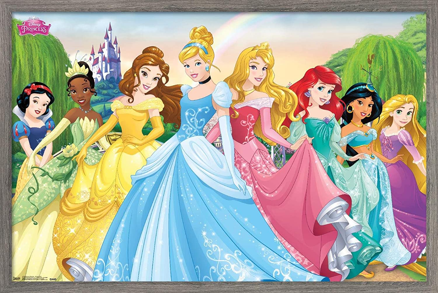 Trends Super sale period limited International Easy-to-use Disney Princess - Po Group Lawn Castle Wall
