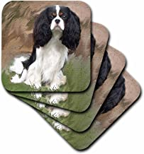3dRose CST_4055_2 Cavalier Spaniel Soft Coasters, (Set of 8)