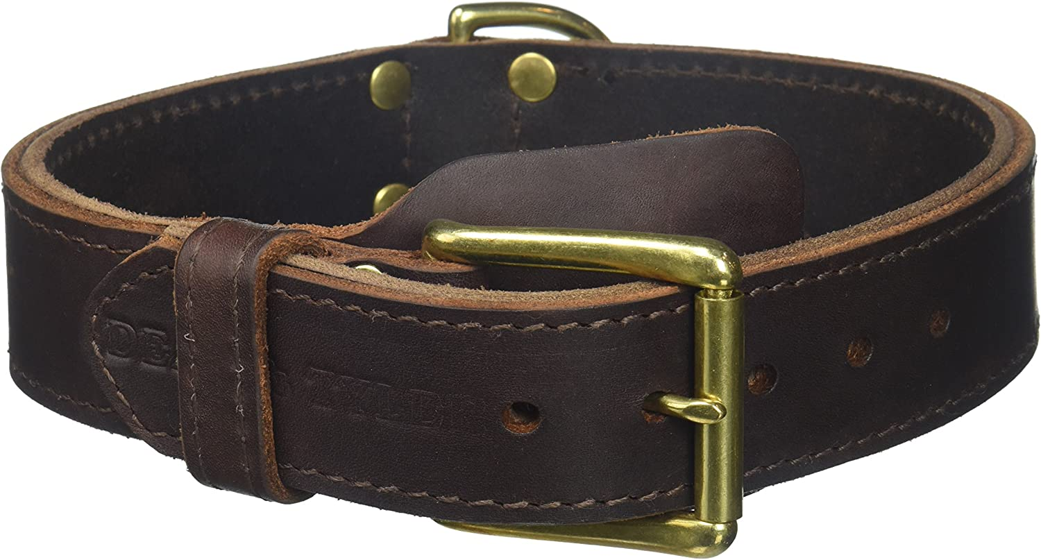 Dean and Tyler SIMPLICITY , Leather Dog Collar with Solid Brass Hardware  Brown  Size 22Inch by 13 4Inch  Fits Neck 20Inch to 24Inch