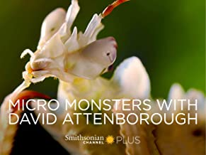Micro Monsters with David Attenborough - Season 1