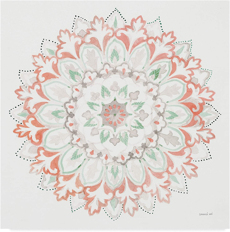 Trademark Fine Art Mandala Delight II Art by Danhui NAI, 14x14