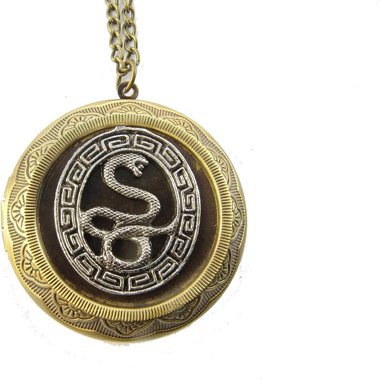 Snake Locket Necklace,Snake Charm Locket, Bronze Snake Charm Locket, Reptile Locket, Primitive Snake, Snake Jewelry