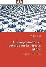 Livres Auto-organisation et routage dans les réseaux ad hoc PDF