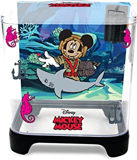 pet mouse aquarium