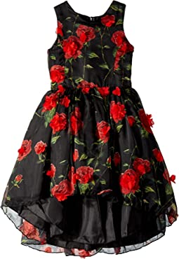 Chiffon Dress With Tack On Flowers (Little Kids/Big Kids)