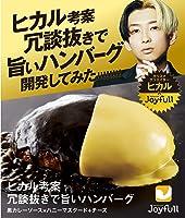 ヒカル 考案 冗談抜きで旨い ハンバーグ (120g) 黒カレーソース×ハニーマスタードチーズ 16個入り 冷凍