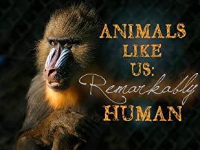 Animals Like Us: Remarkably Human